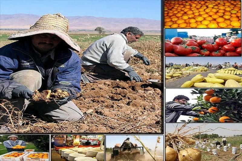 تخصیص ۲۸۰۰میلیارد ریال تسهیلات اشتغال روستایی به استان مرکزی