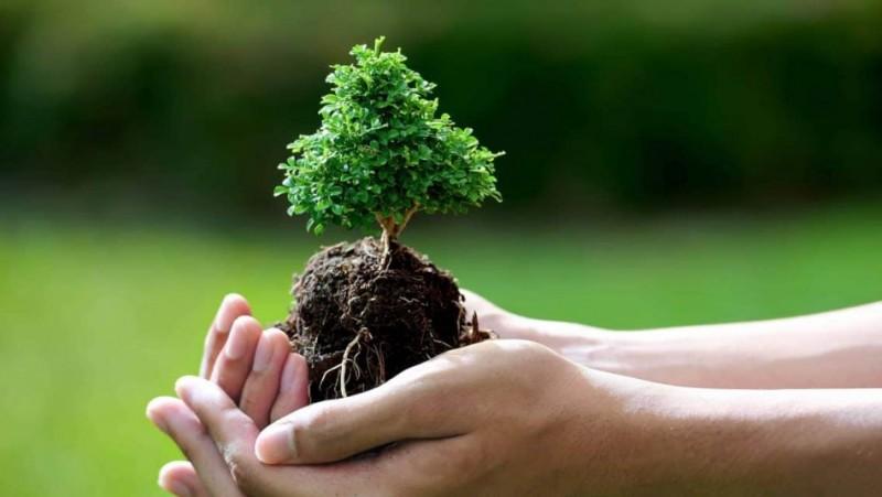 ۷۲ درصد از پستهای سازمانی محیط زیست خراسان شمالی خالی است