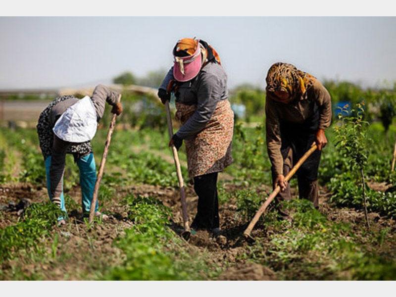 پرداخت ۲۷ میلیارد و ۶۰۰ میلیون تومان وام اشتغال روستایی در تویسرکان